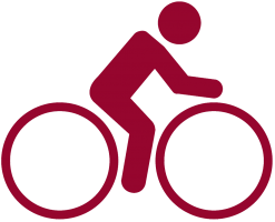 cycleicon